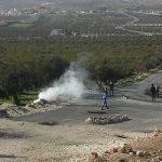 4 إصابات بمواجهات مع الاحتلال في تقوع شرق بيت لحم
